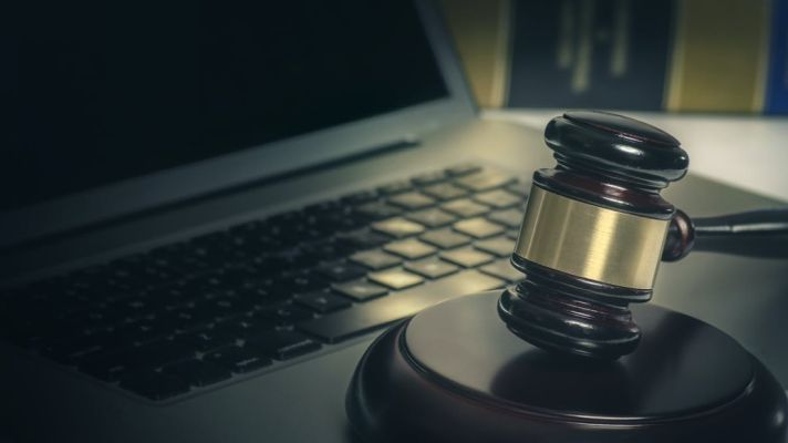The Lunacy of Idaho's On-Line Court