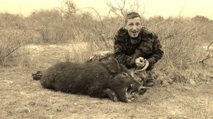 45 Minutes, Two U.S. Senators, and One Dead Pig